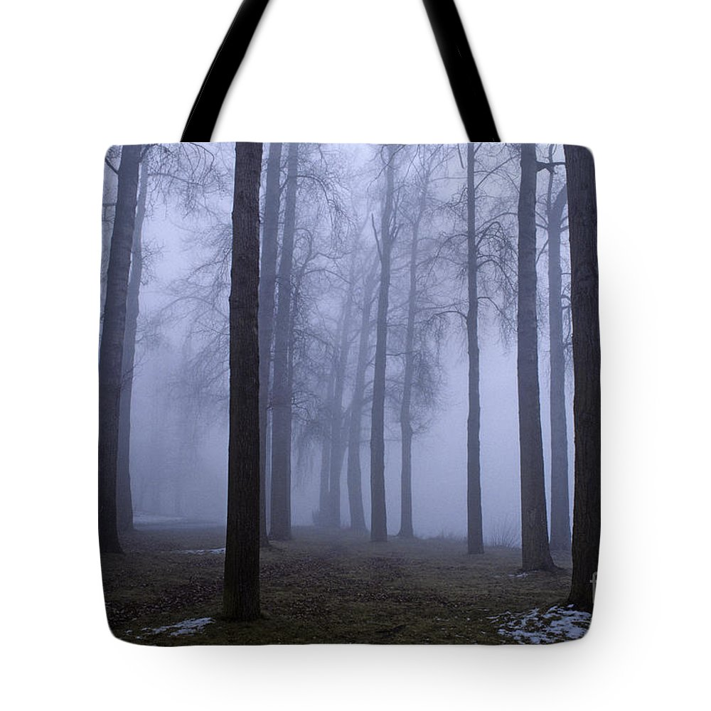 Travel Tote Bag featuring the photograph Trees Along Greenlake In Fog by Jim Corwin
