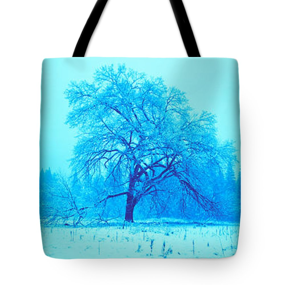 Photography Tote Bag featuring the photograph Trees In A Snow Covered Landscape by Panoramic Images