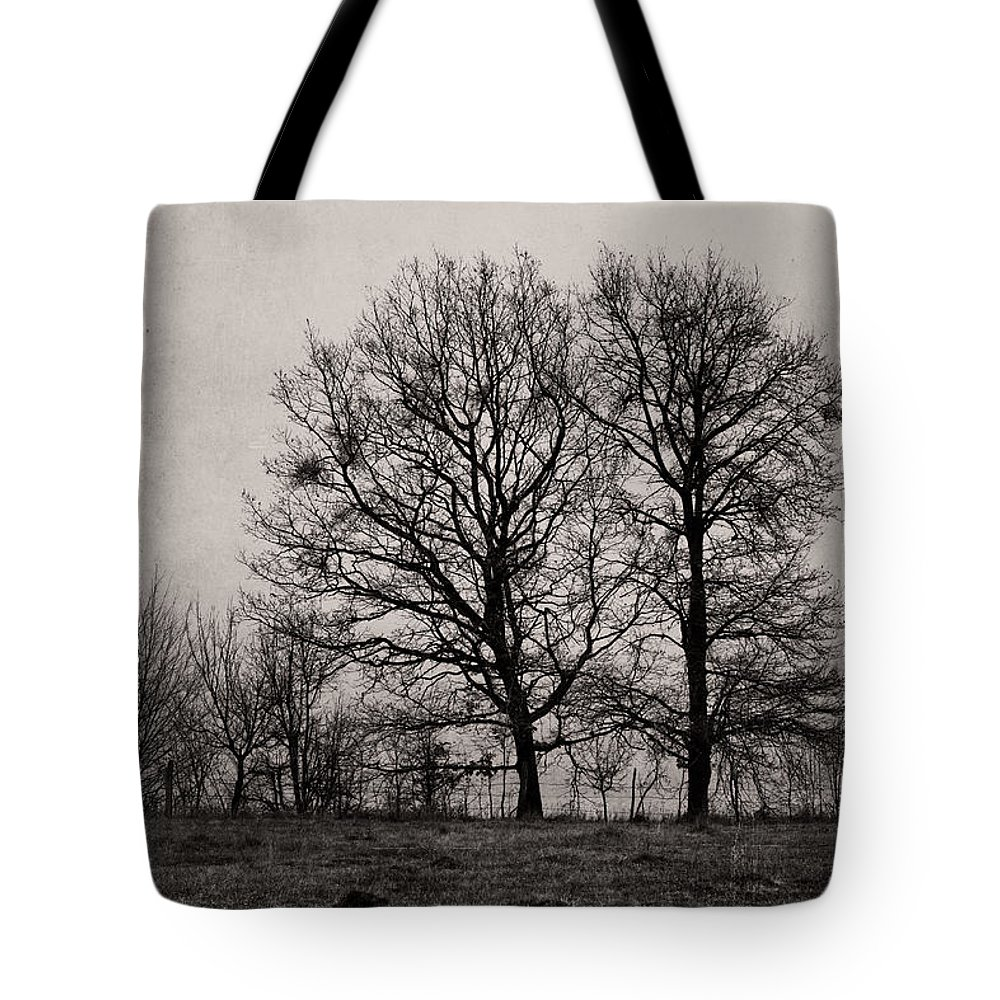 Monochrome Tote Bag featuring the photograph Trees In November by Cristina-Velina Ion