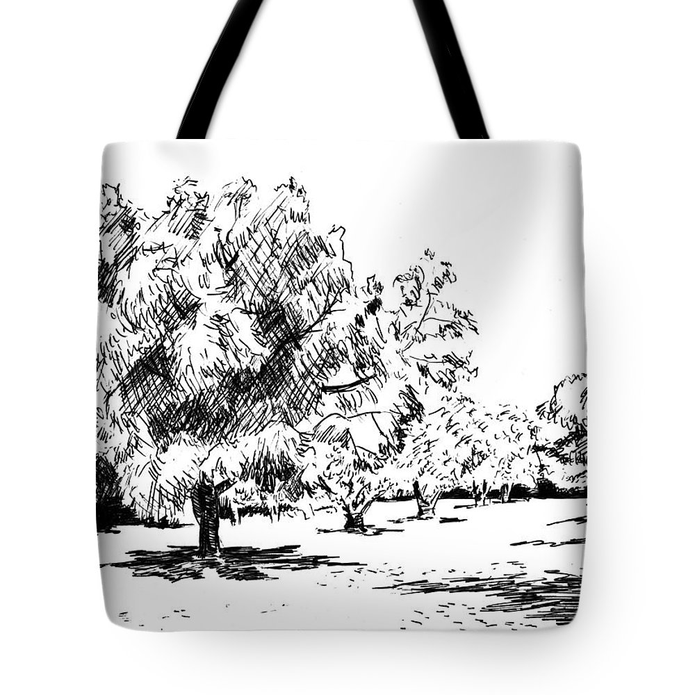 Tree Tote Bag featuring the drawing Trees by Masha Batkova