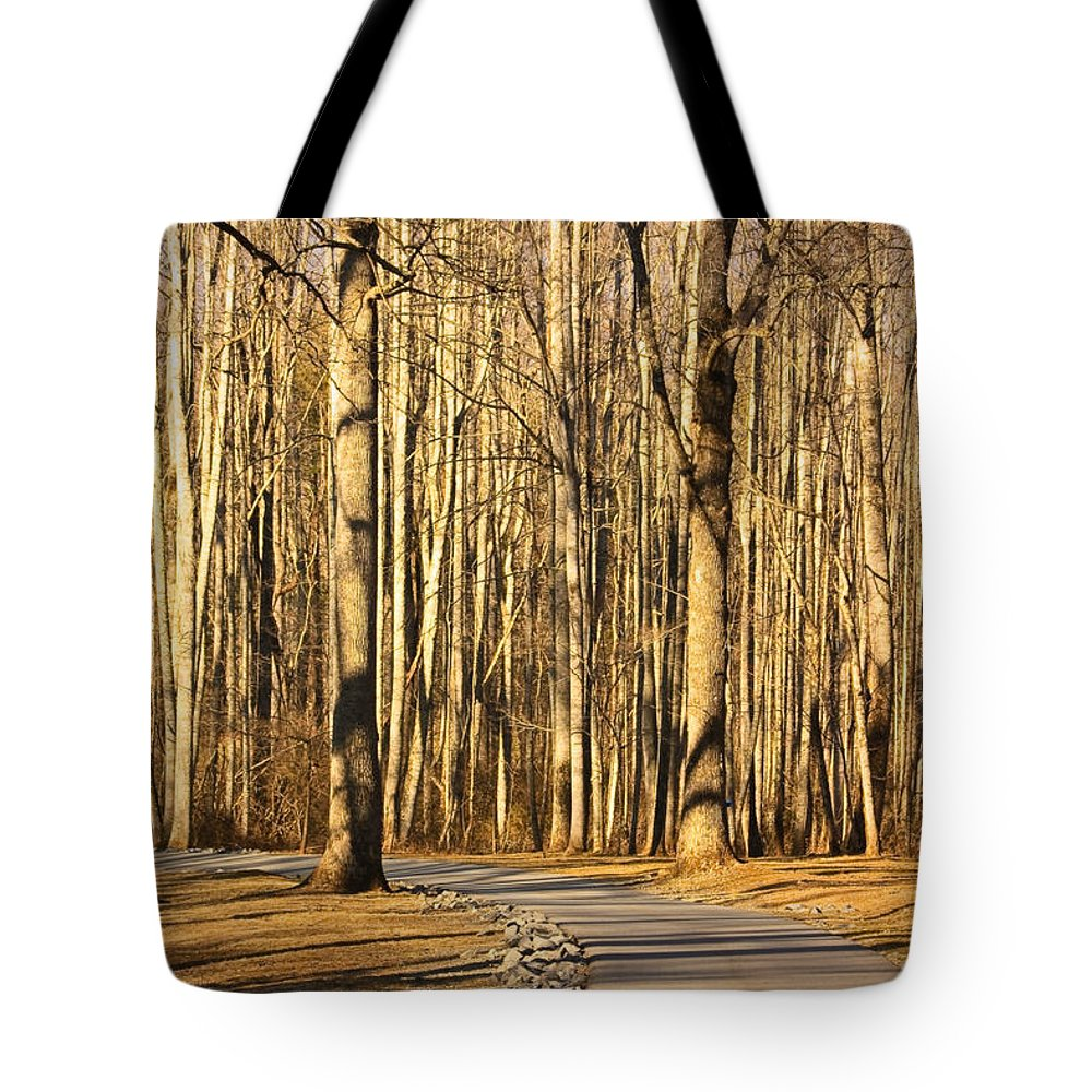 Trees Tote Bag featuring the photograph Trees Shadows by Tammy Schneider