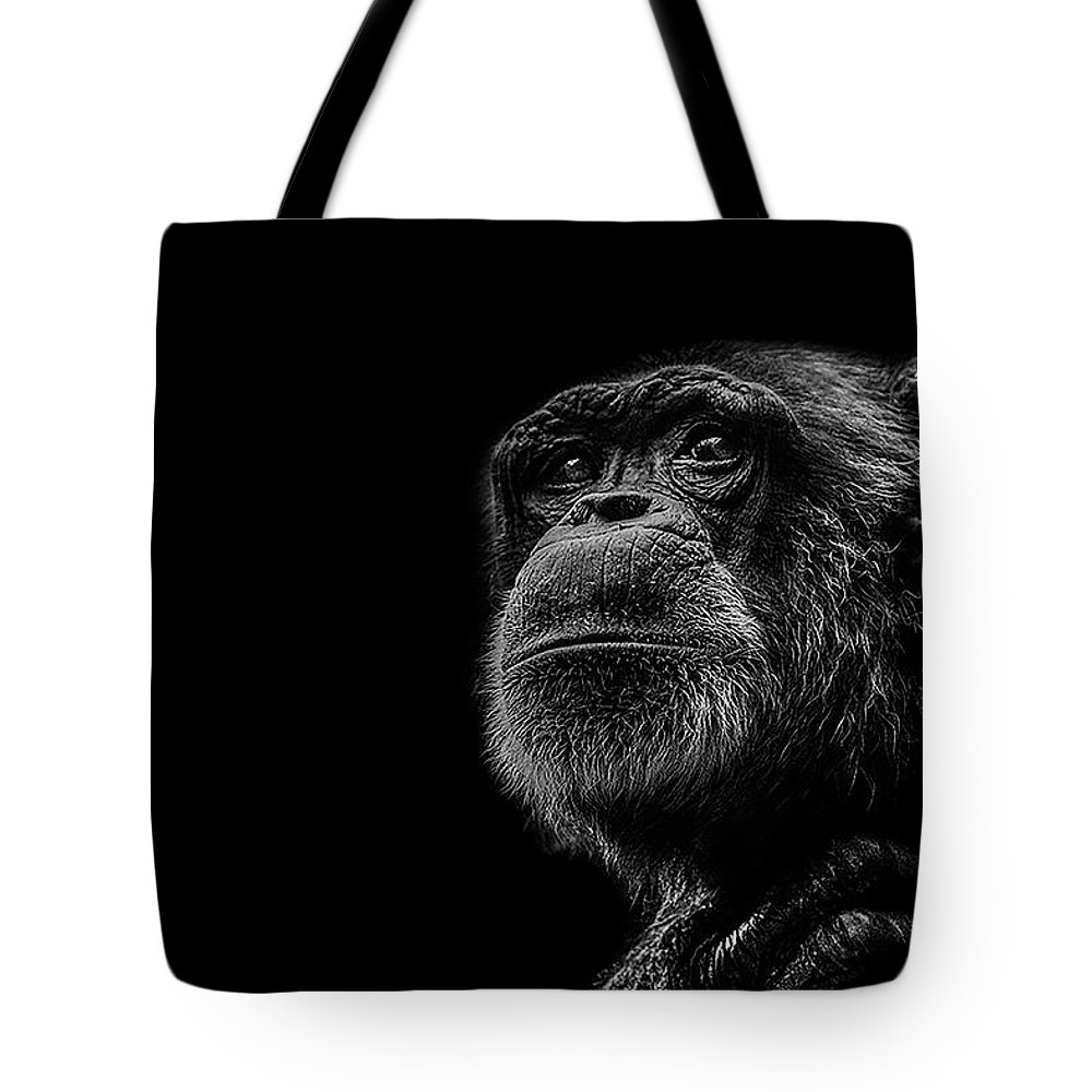 Low Key Photographs Tote Bags