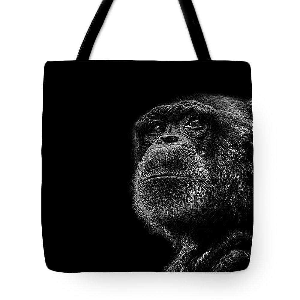 Chimpanzee Tote Bags