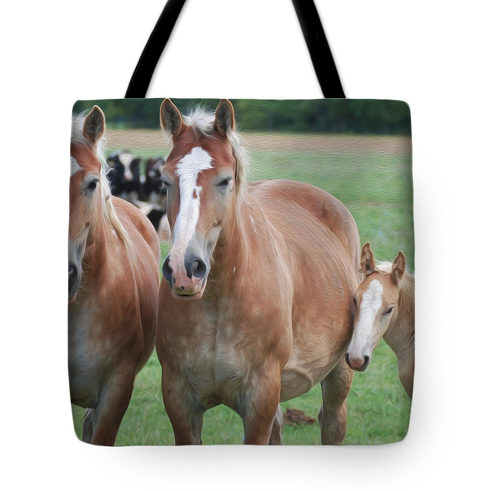 Horses Tote Bag featuring the photograph Trio Of Horses 2 by Tracy Winter