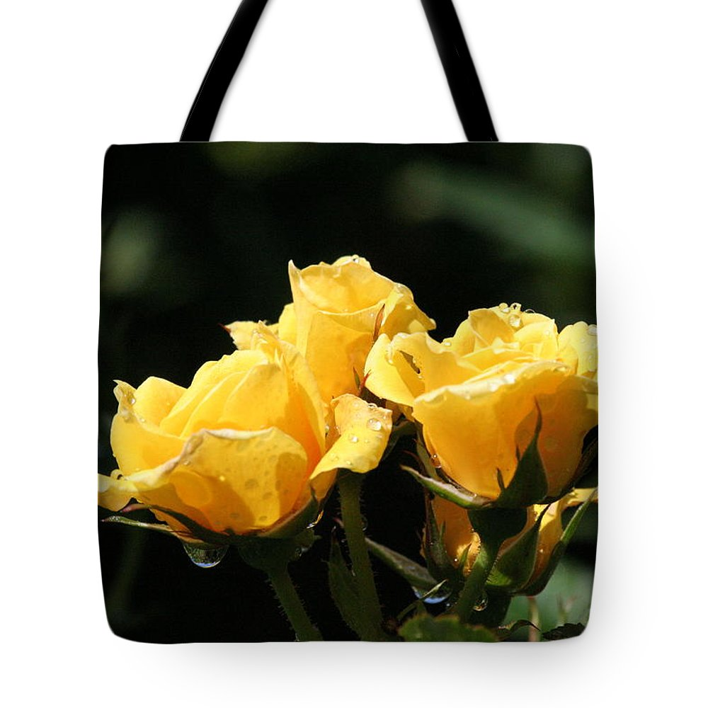 Roses Tote Bag featuring the photograph Trio Of Yellow Roses by Liz Marr