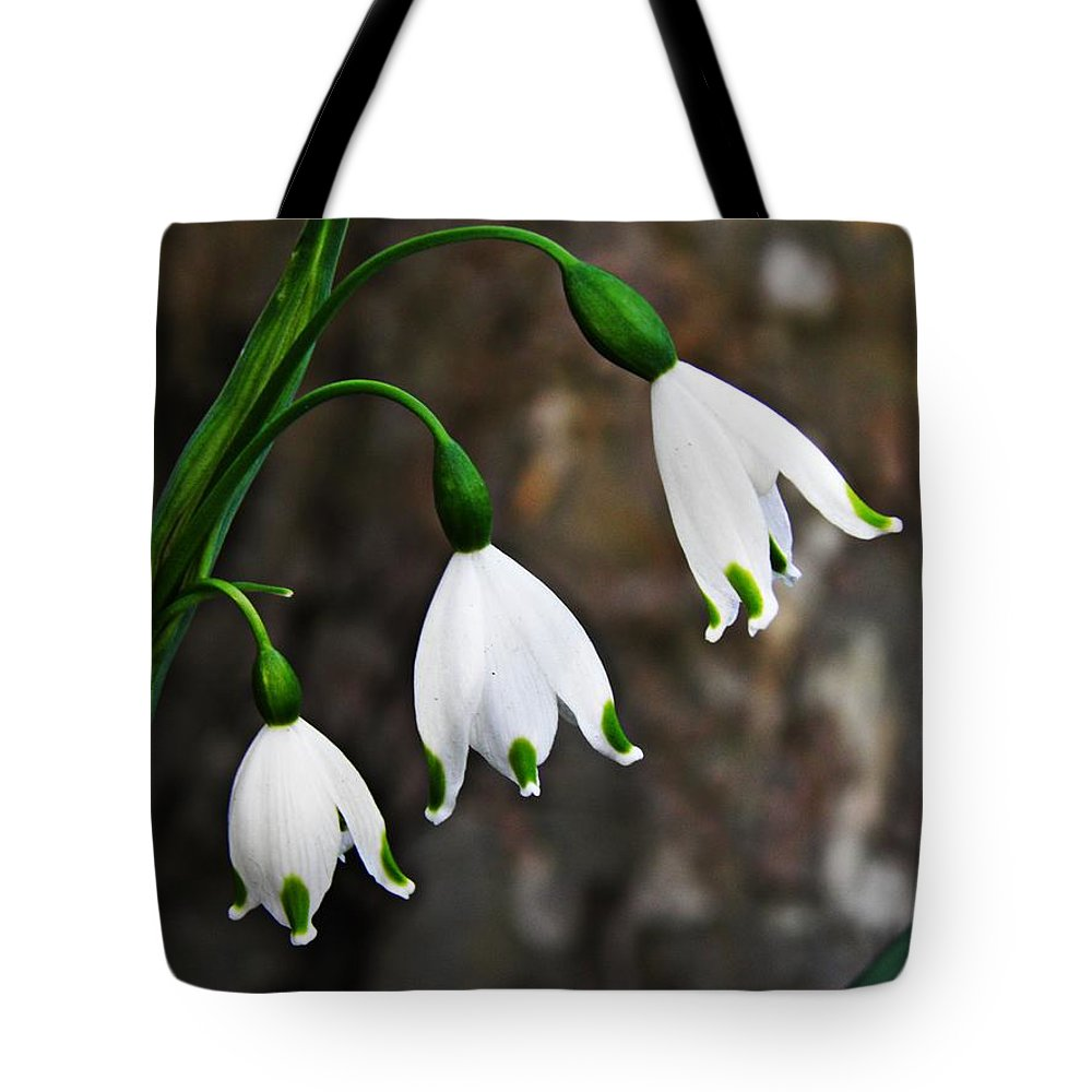 Spring Tote Bag featuring the photograph Triplets by Sarah Loft