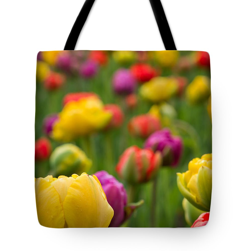 Colorful Tulip Tote Bag featuring the photograph Triumphant Tulips by Lindley Johnson