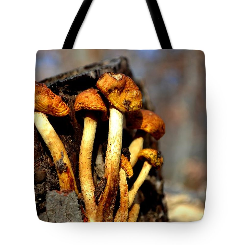 Fungus Tote Bag featuring the photograph Troopers by Carlee Ojeda
