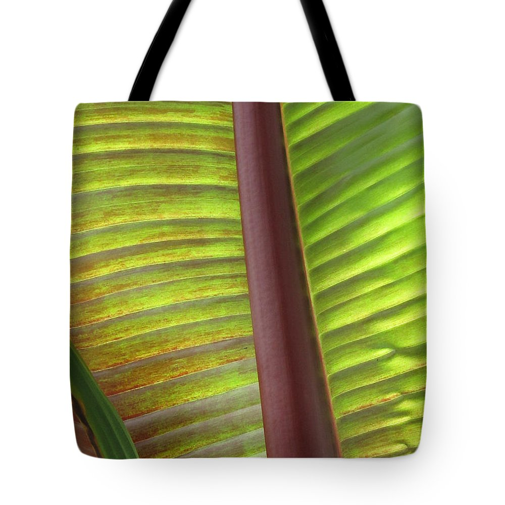Duane Mccullough Tote Bag featuring the photograph Tropical Banana Leaf Abstract by Duane McCullough