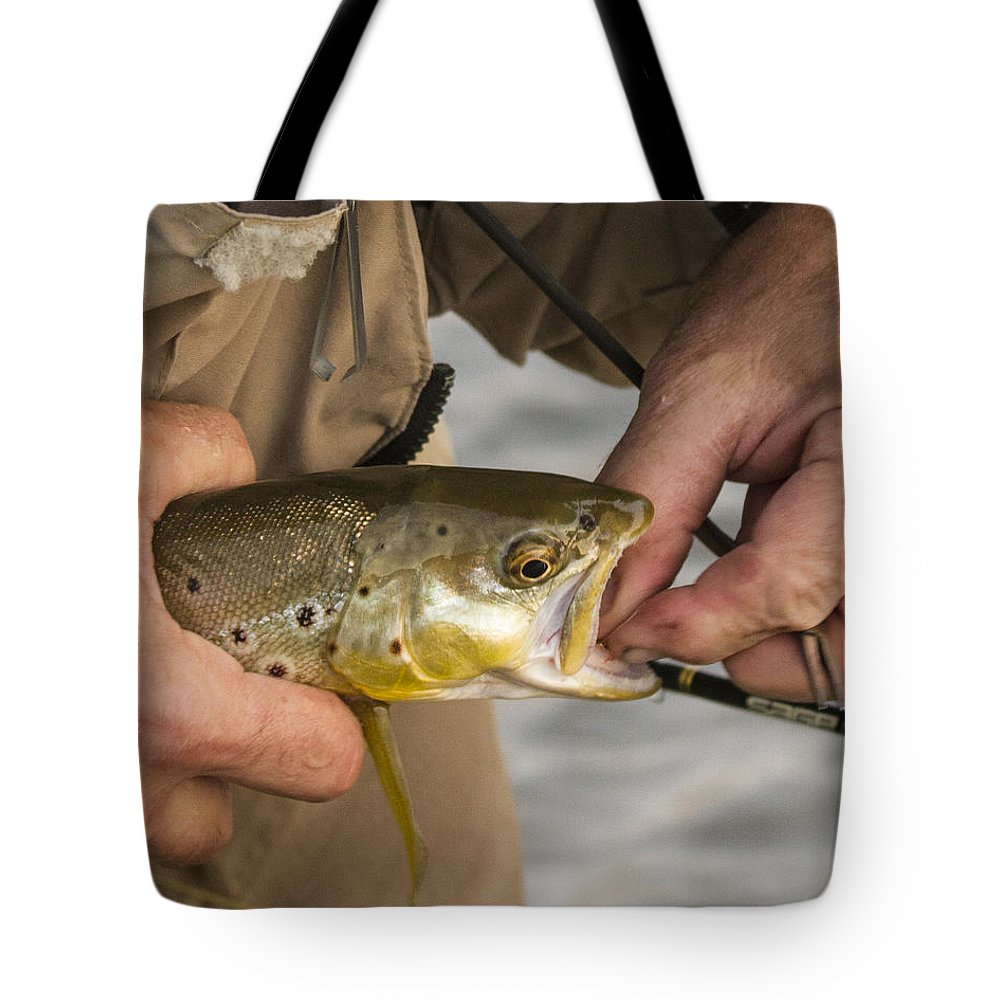 Trout: Tote Bag featuring the photograph Trout Dentistry by Jean Noren