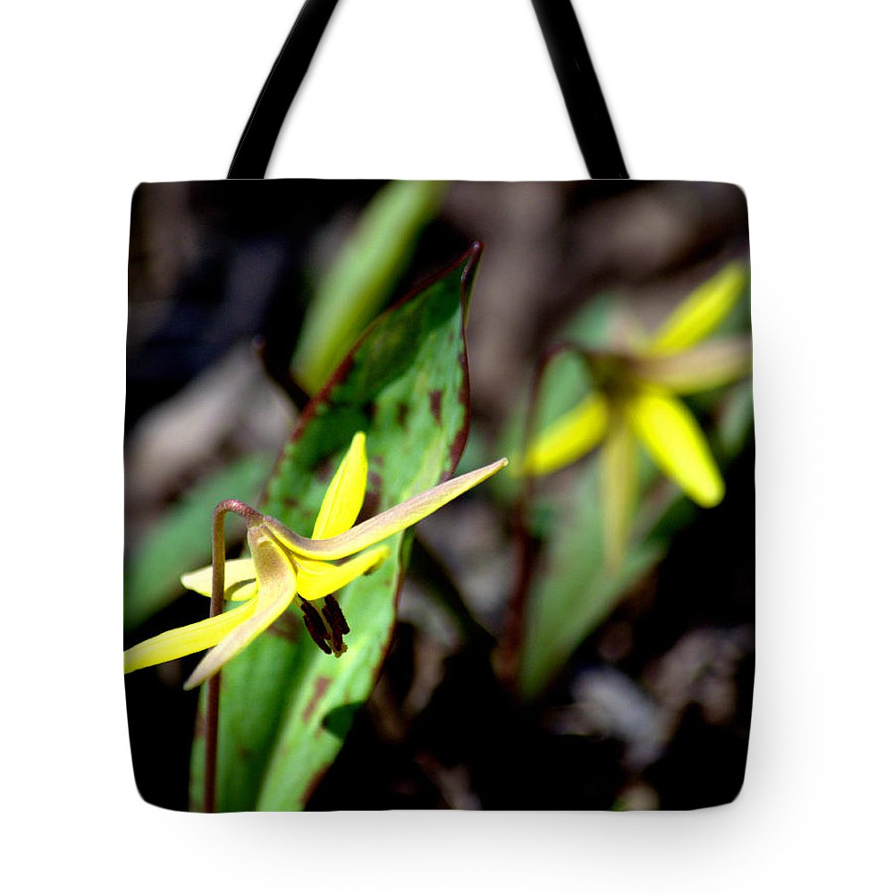 Trout Lily Tote Bag featuring the photograph Trout Lilies by Urbanmoon Photography