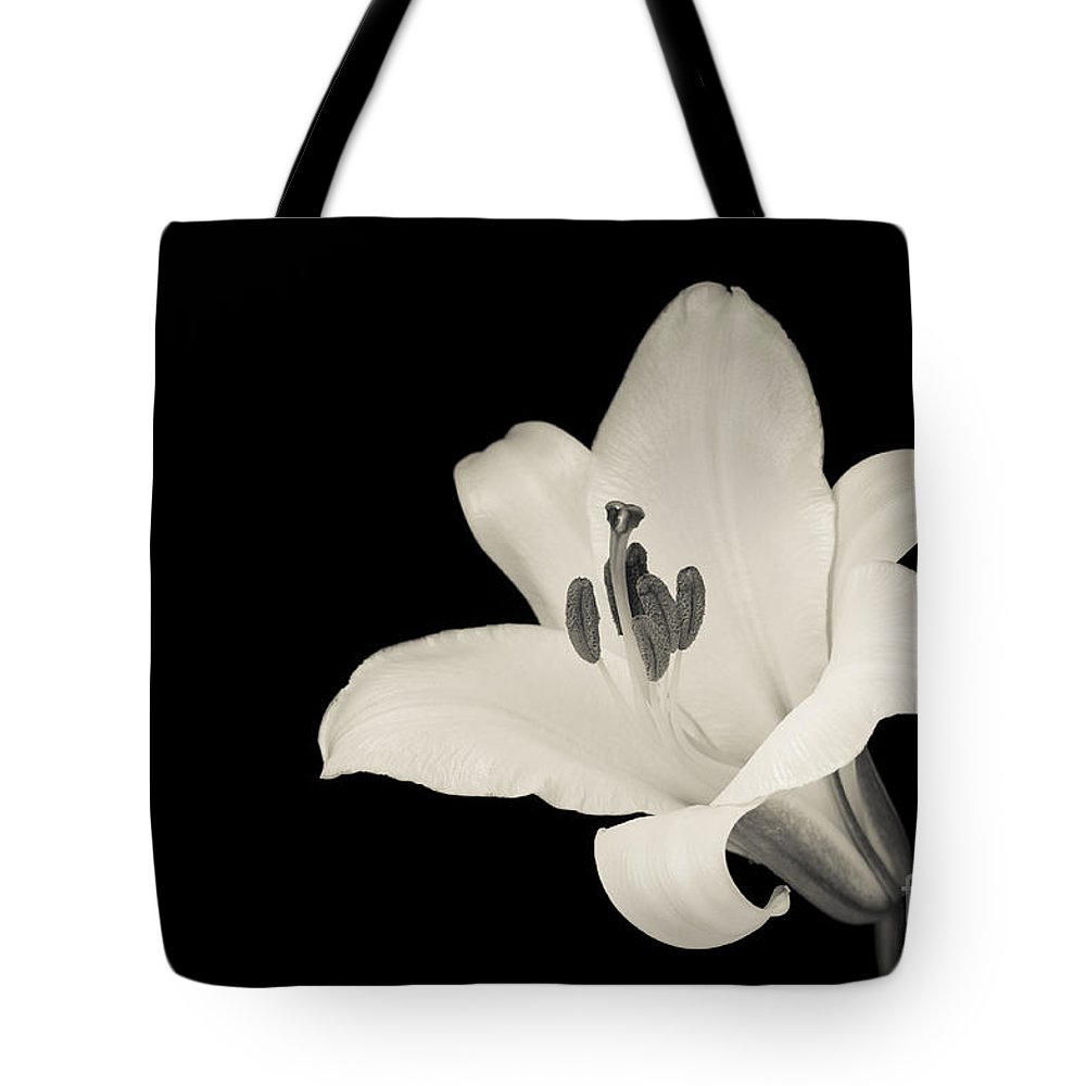 Beauty Tote Bag featuring the photograph Trumpet Lily by Oscar Gutierrez