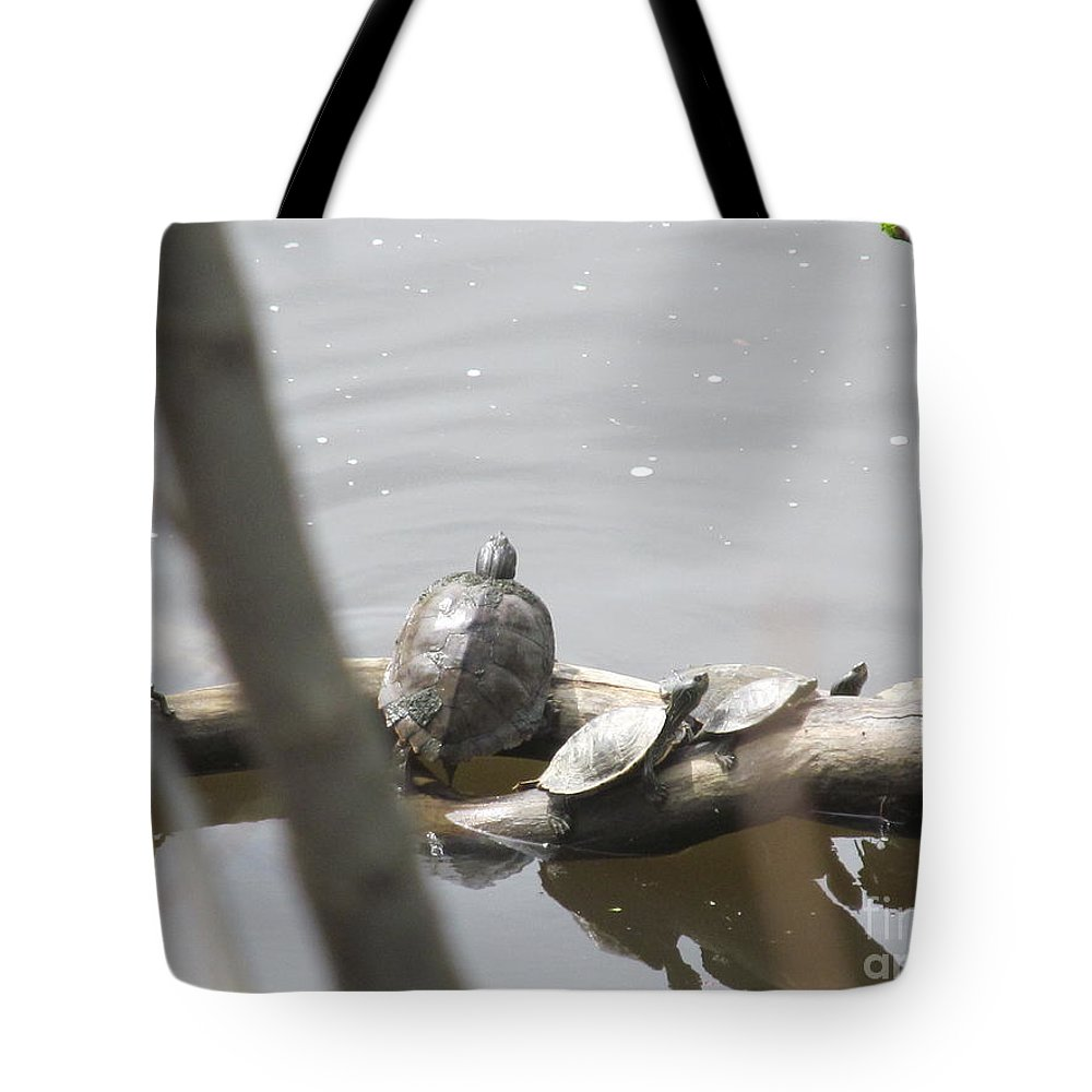 Turtle Tote Bag featuring the photograph Trying To Cross Over by Tina M Wenger