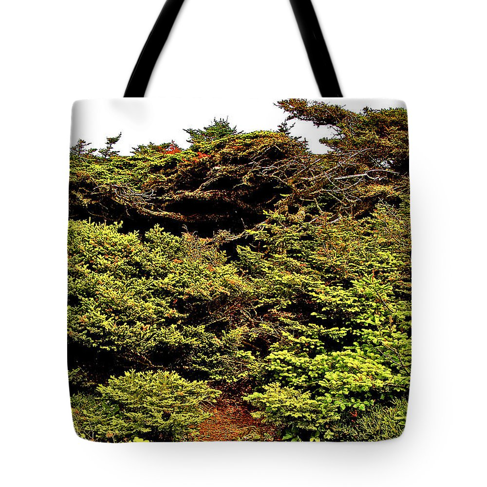 Tuckamore At Green Point Coastal Trail In Gros Morne Np Tote Bag featuring the photograph Tuckamore At Green Point Coastal In Gros Morne Np-nl by Ruth Hager