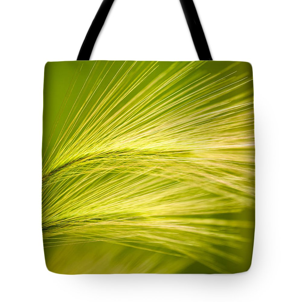 Ornamental Grass Tote Bag featuring the photograph Tufts Of Ornamental Grass by Onyonet Photo Studios