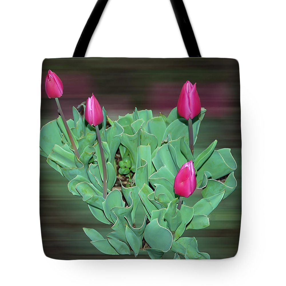 Tulip Tote Bag featuring the photograph Tulip Bouquet by Aimee L Maher ALM GALLERY