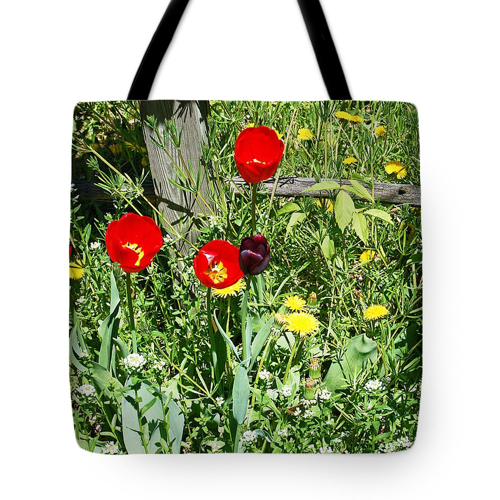 Tulip Tote Bag featuring the photograph Tulip Garden by Aimee L Maher ALM GALLERY