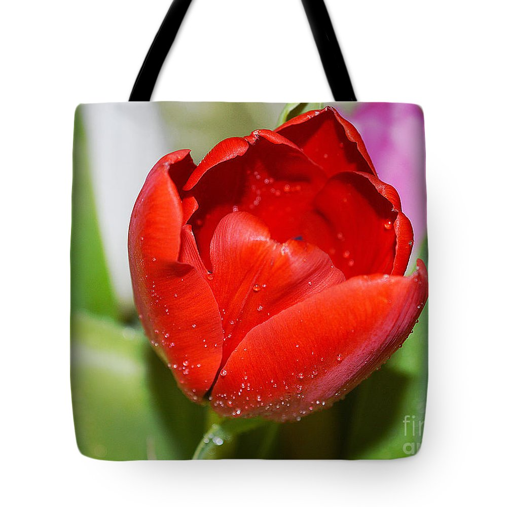 Petal Tote Bag featuring the photograph Tulip Heart by Felicia Tica