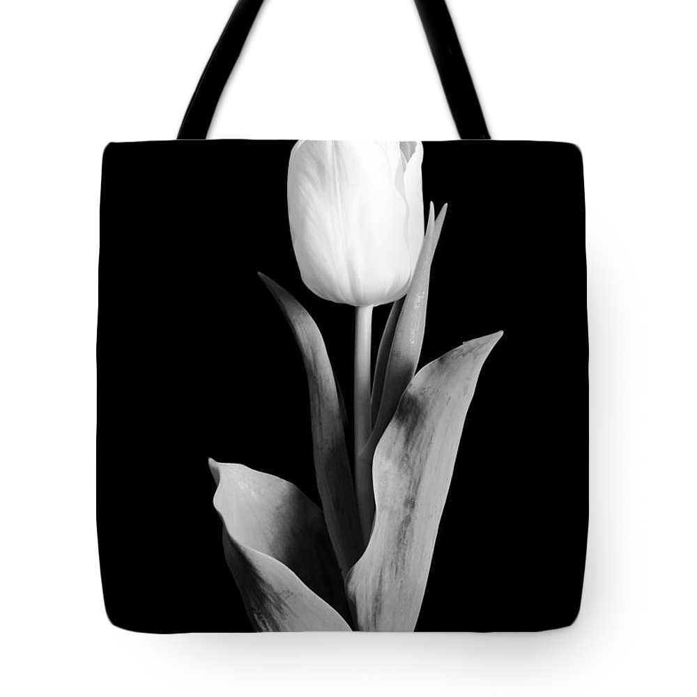 Tulip Tote Bag featuring the photograph Tulip by Sebastian Musial