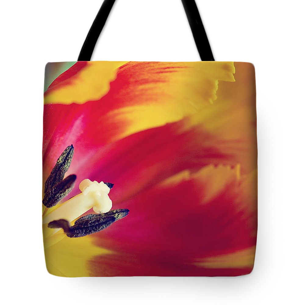 Tulpe Tote Bag featuring the pyrography Tulip by Steffen Gierok