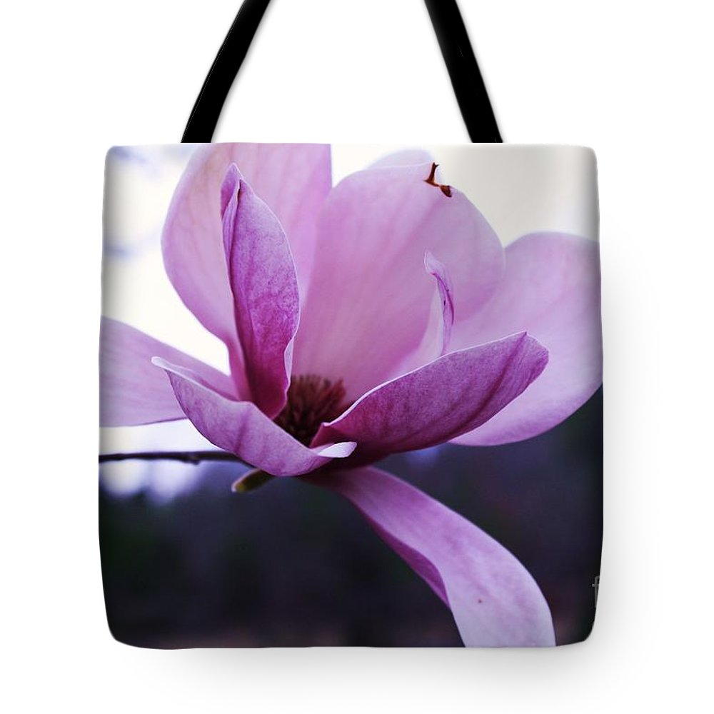 Tulip Tree Flower Tote Bag featuring the photograph Tulip Tree Blooming by Tia Patton