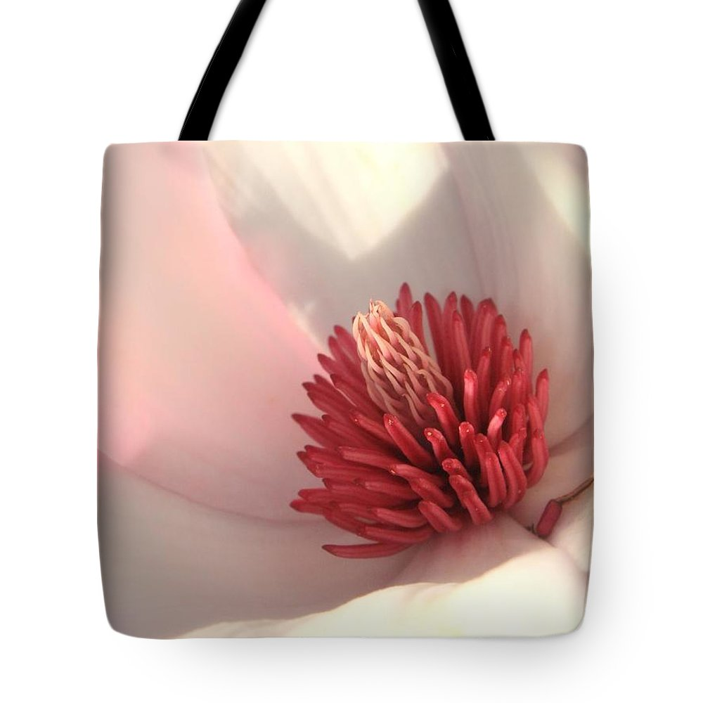 Saucer Magnolia Tote Bag featuring the photograph Tulip Tree Blossom by Carol Groenen