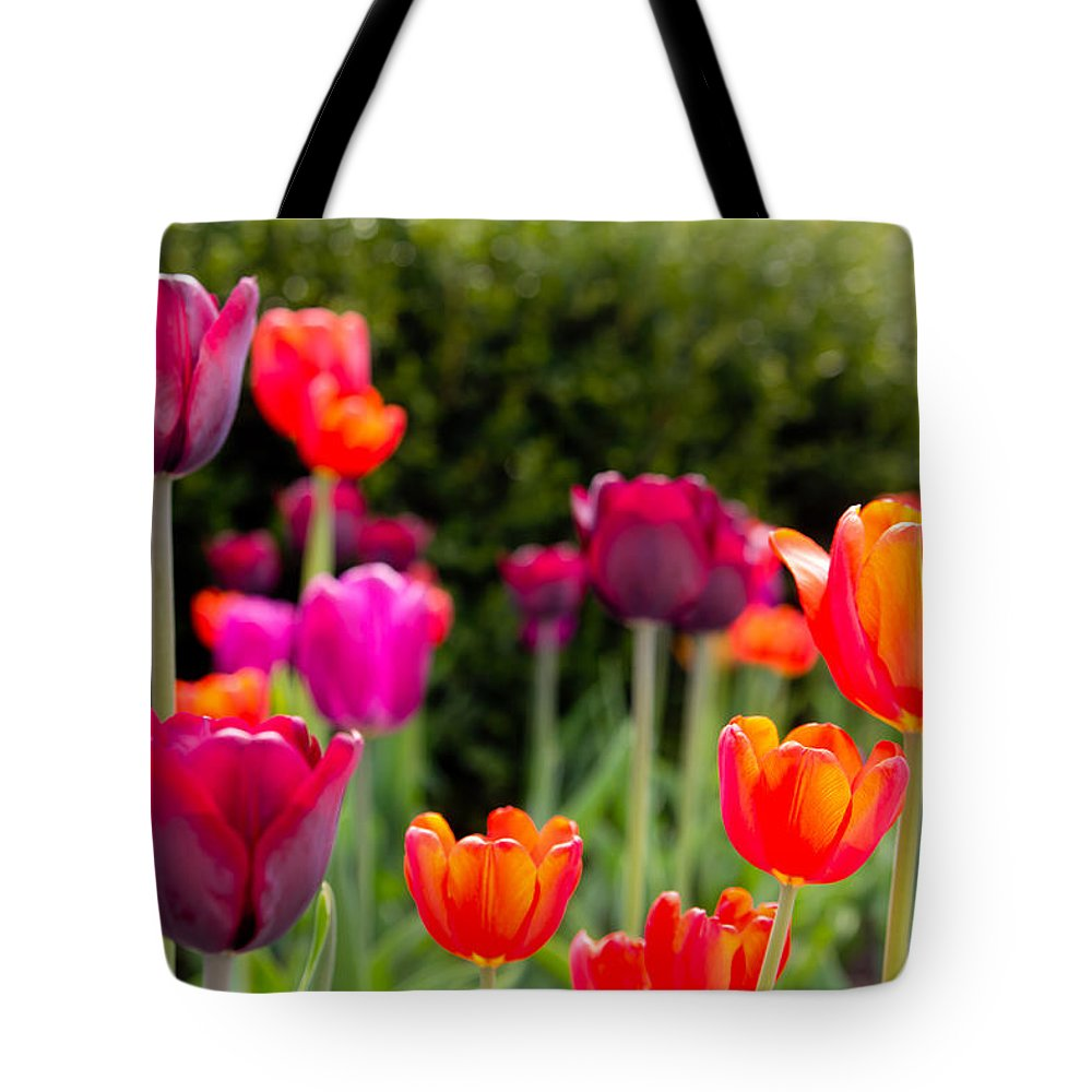 Tulips Tote Bag featuring the photograph Tulips  by John McGraw