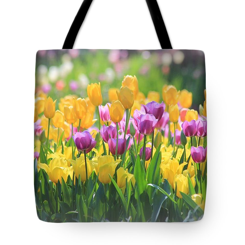 Tulips Tote Bag featuring the photograph Tulips by Elizabeth Budd