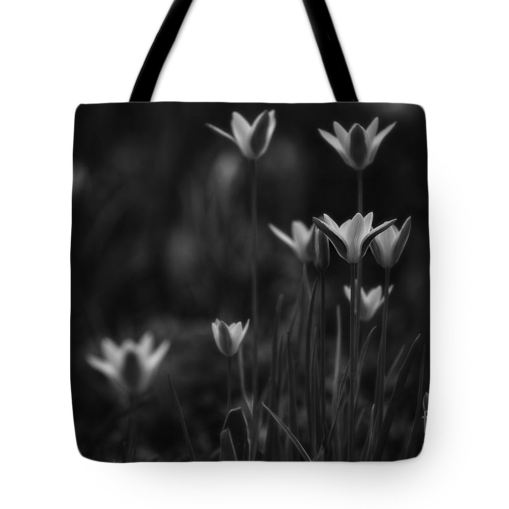 Tulips Tote Bag featuring the photograph Tulips In Black And White by Mary Smyth