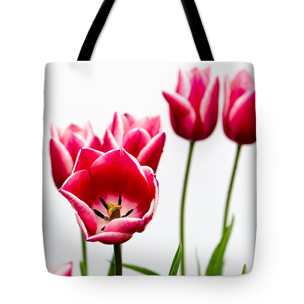 Tote Bag featuring the photograph Tulips Say Hello by Michael Arend