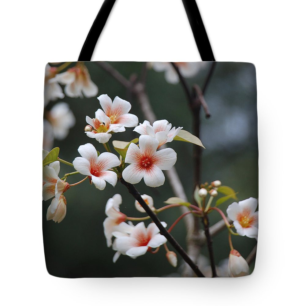 Tung Oil Tote Bag featuring the photograph Tung Oil Blossoms by Suzanne Gaff