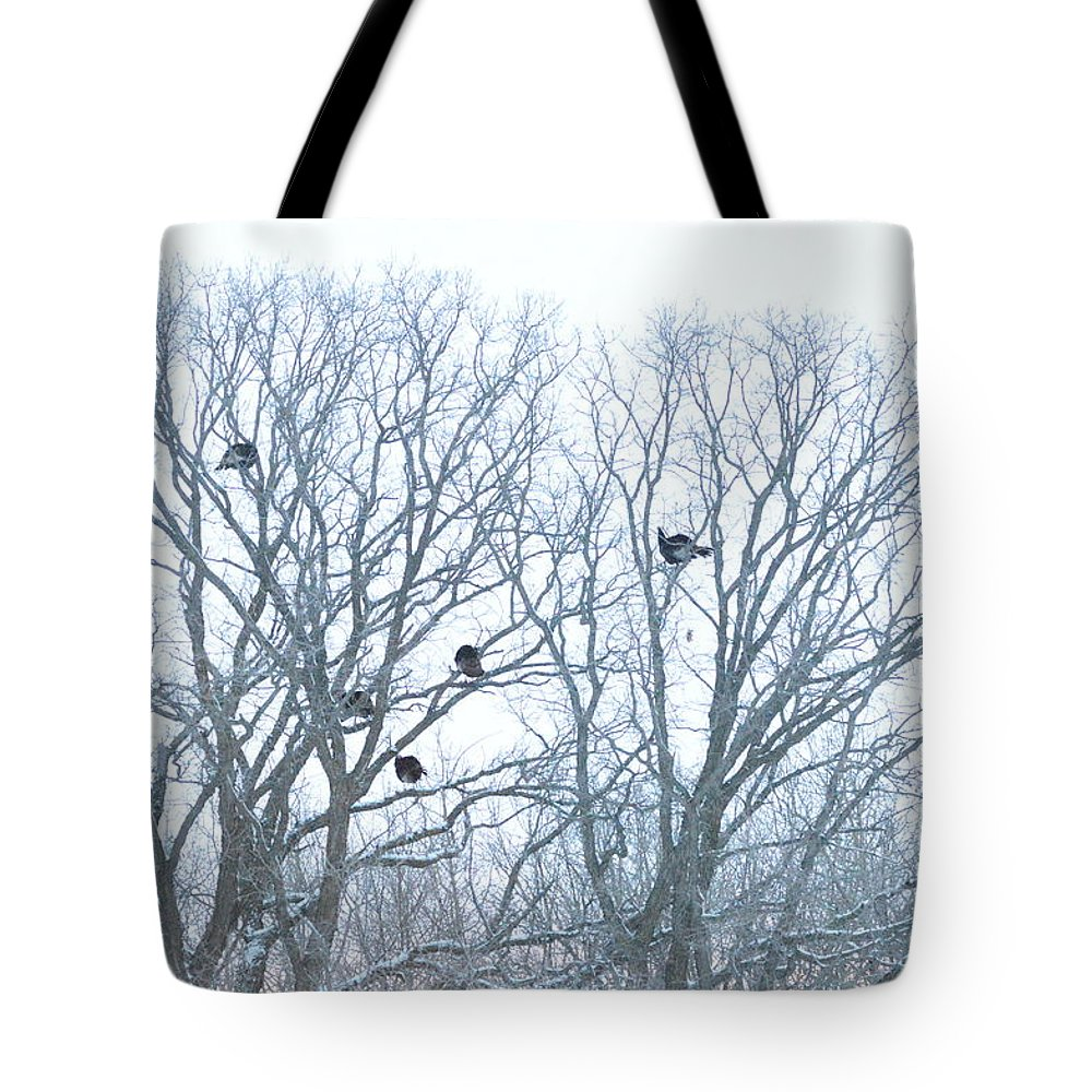 Wildlife Tote Bag featuring the photograph Turkey Tree by Dacia Doroff