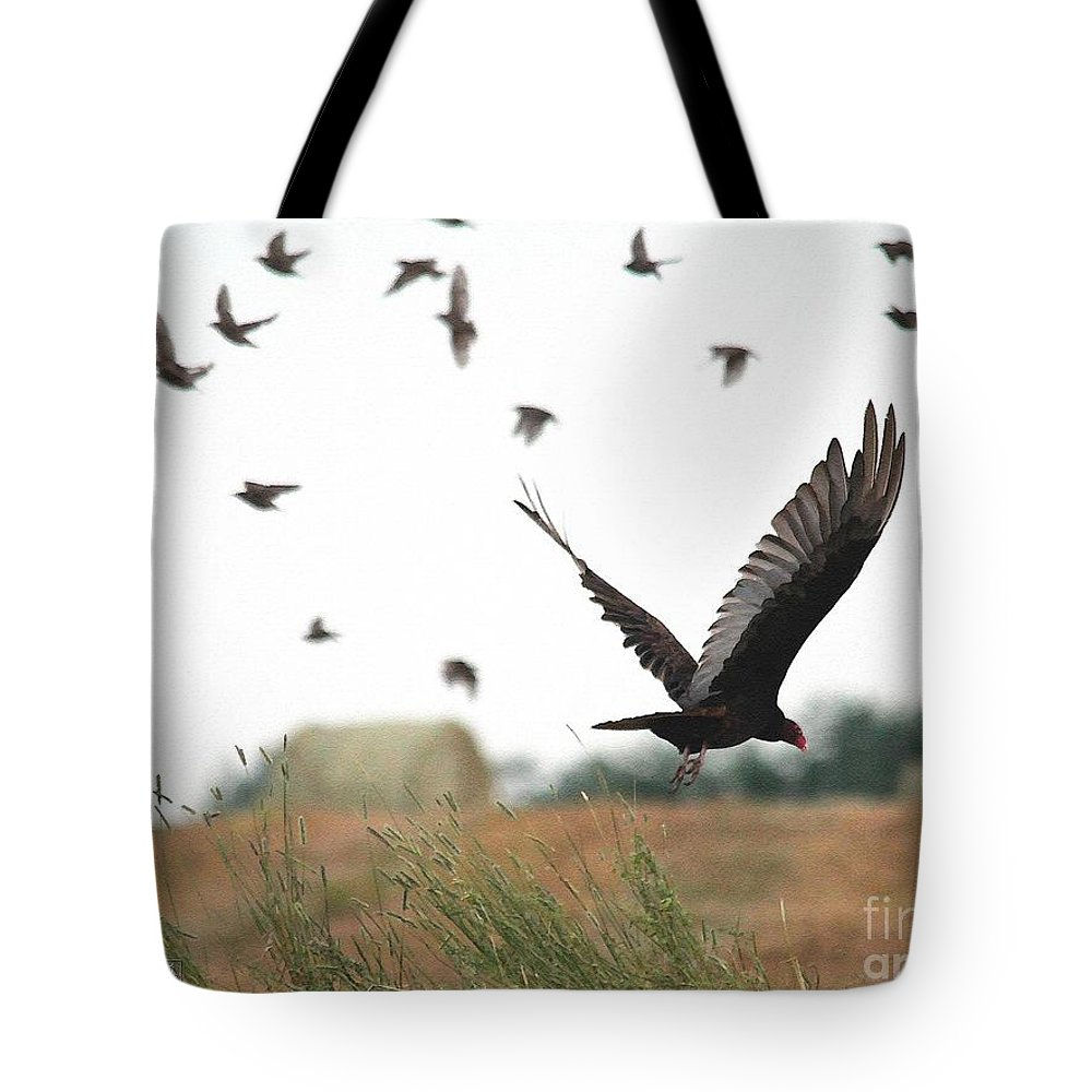 Mccombie Tote Bag featuring the painting Turkey Vulture Takes Flight by J McCombie