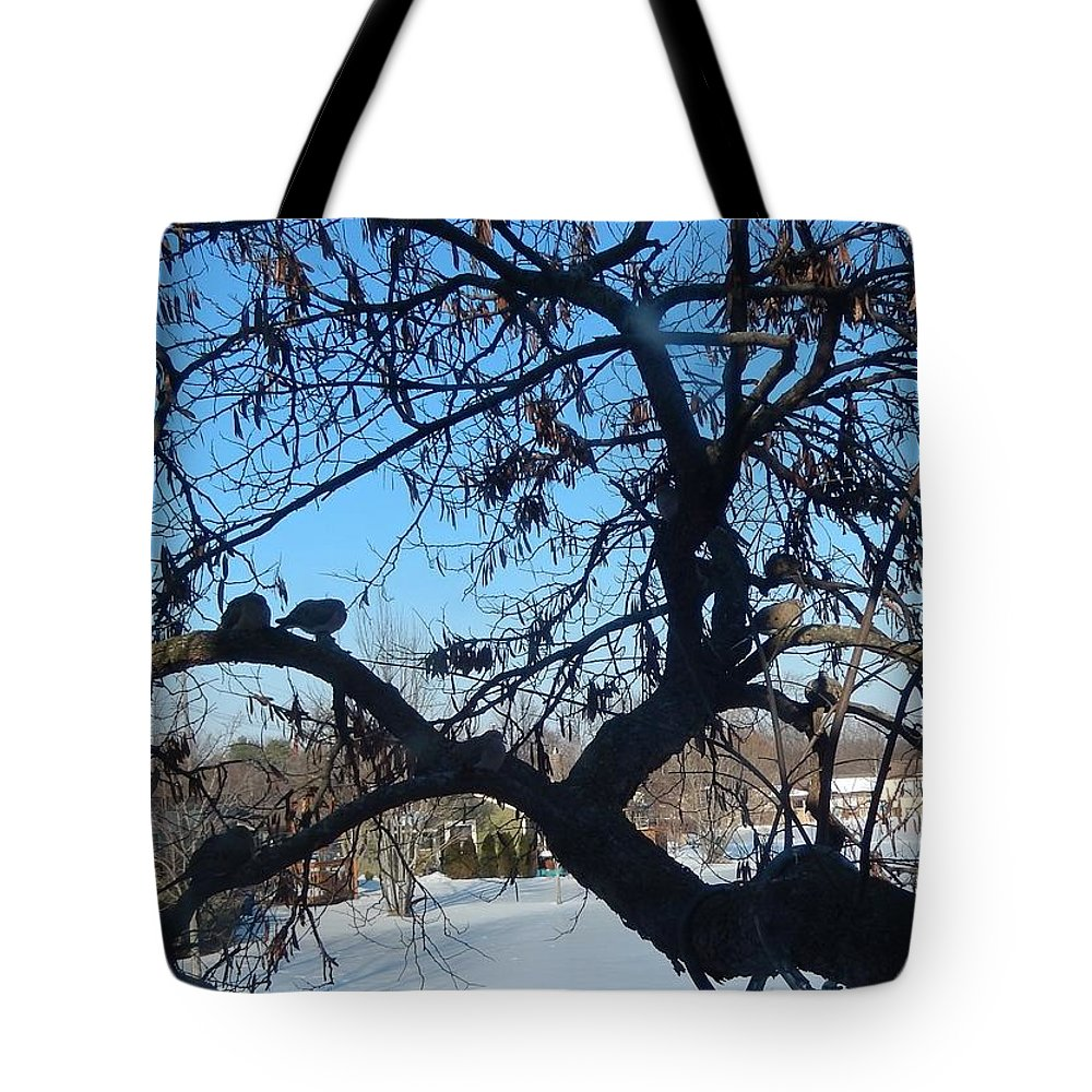 Twelve Tote Bag featuring the photograph Twelve Doves by Susan Wyman