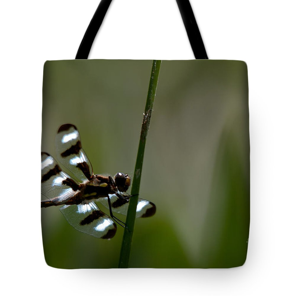 Dragonfly Tote Bag featuring the photograph Twelve Spotted Skimmer by Cheryl Baxter