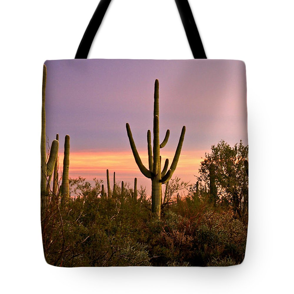 Arizona Tote Bag featuring the photograph Twilight After Sunset In The Cactus Forests Of Saguaro National Park by Ed Riche