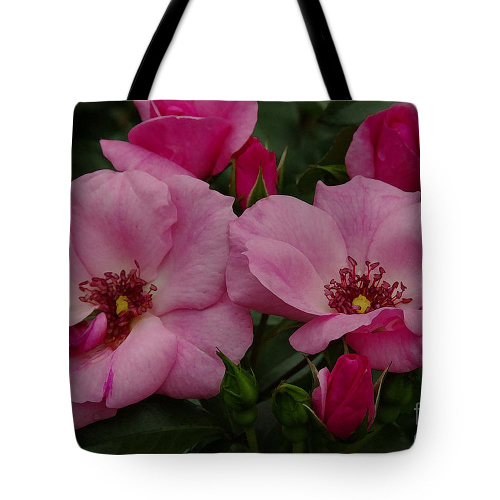 Pink Tote Bag featuring the photograph Twin Roses by James C Thomas