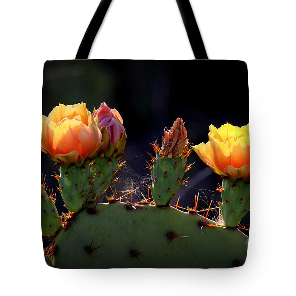 Cactus Photographs Tote Bag featuring the photograph Twins by C Ray Roth
