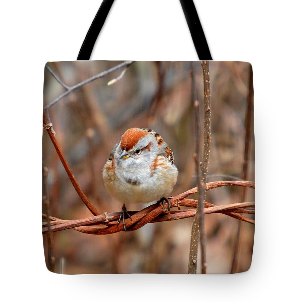Chipping Sparrow Tote Bag featuring the photograph Twisted Vine Perch by Thomas Phillips