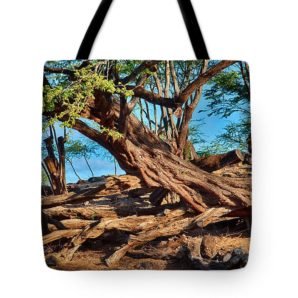 Abstract Tote Bag featuring the photograph Twisting Trees by Omaste Witkowski