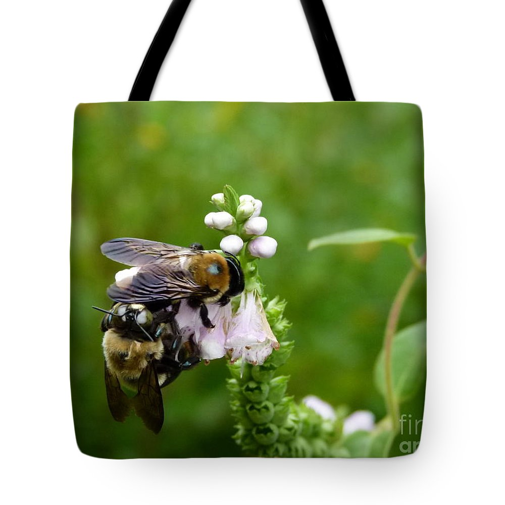 Bees Tote Bag featuring the photograph Two Bees On Flower by Jane Ford