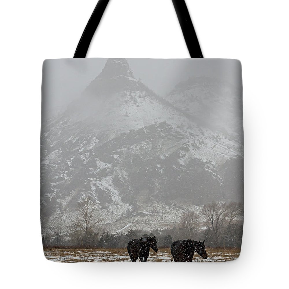 Horse Tote Bag featuring the photograph Two Black Horses In The Snow  #7983 by J L Woody Wooden