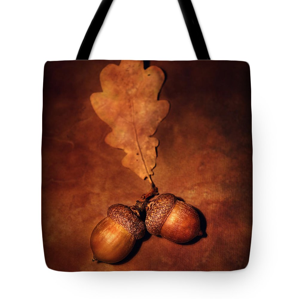 Still Life Tote Bag featuring the photograph Two Brown Acorns by Jaroslaw Blaminsky