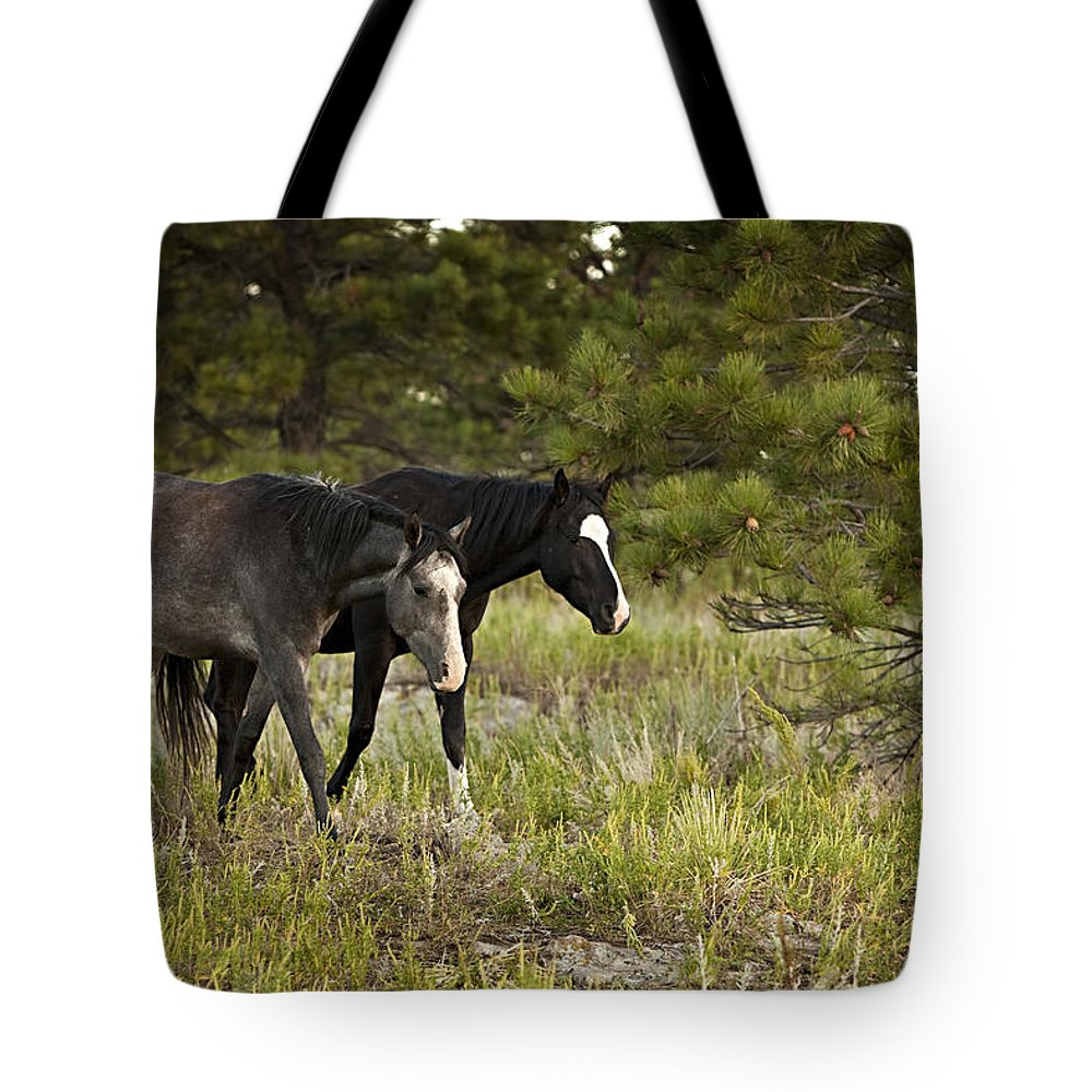 Horse Tote Bag featuring the photograph Two Buddies by Jack Milchanowski