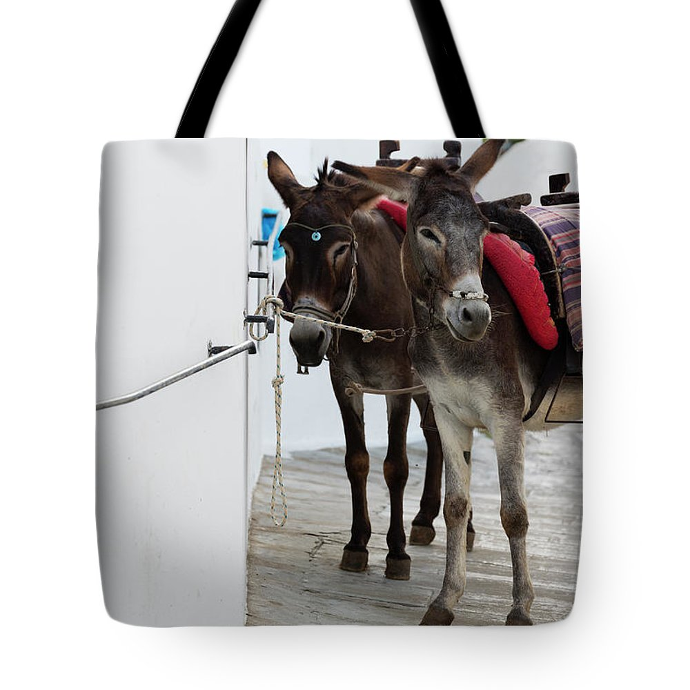 Working Animal Tote Bag featuring the photograph Two Donkeys Tethered In The Street In by Martin Child