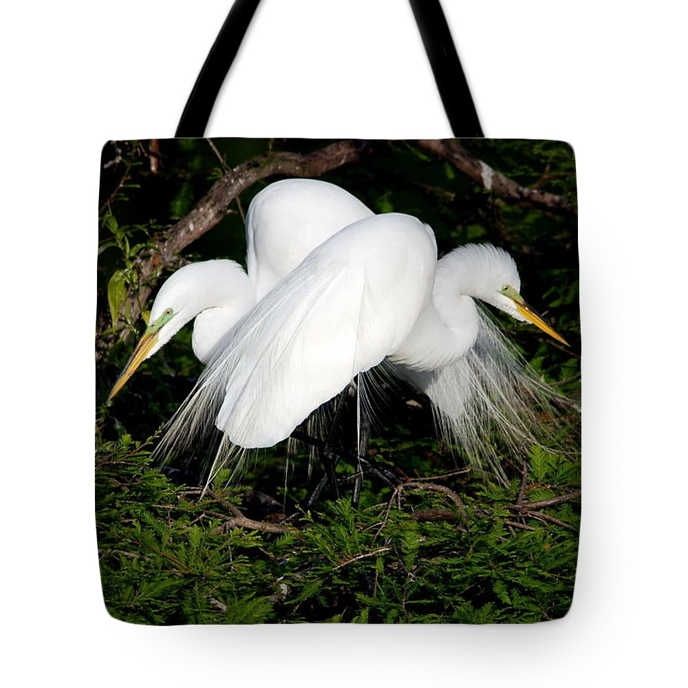Egrets Tote Bag featuring the photograph Two Egrets by John Greco