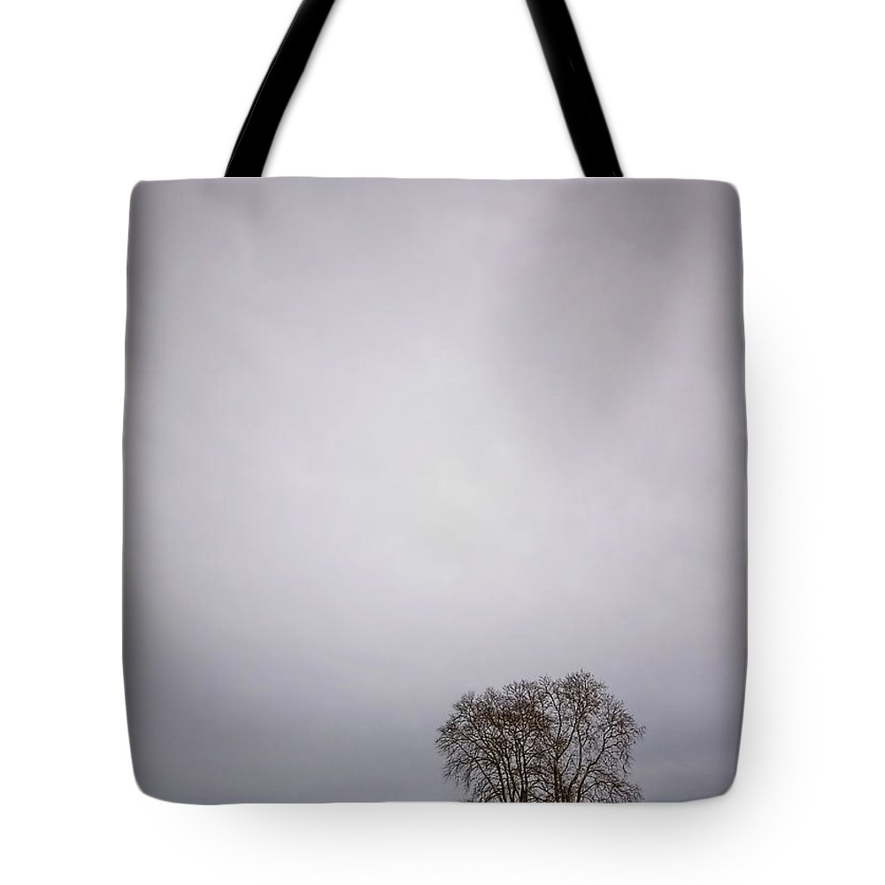 Country Tote Bag featuring the photograph Two by Evelina Kremsdorf