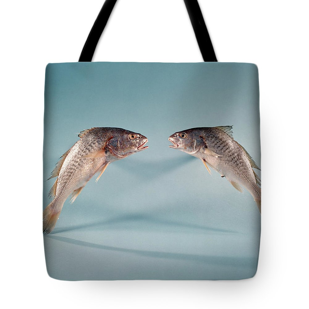 Two Fish Symbol For Pisces Sign Talking Tote Bag For Sale By Vintage