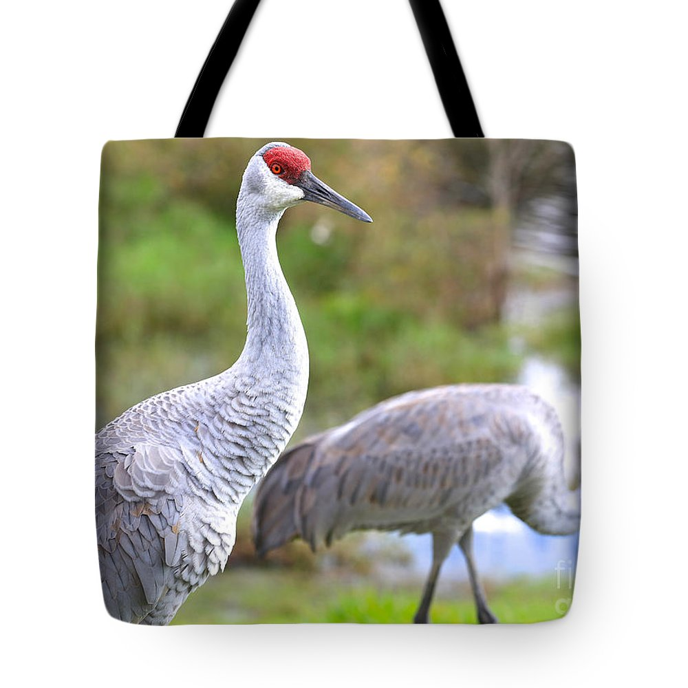 Sandhill Tote Bag featuring the photograph Two Pretty Sandhills by Carol Groenen