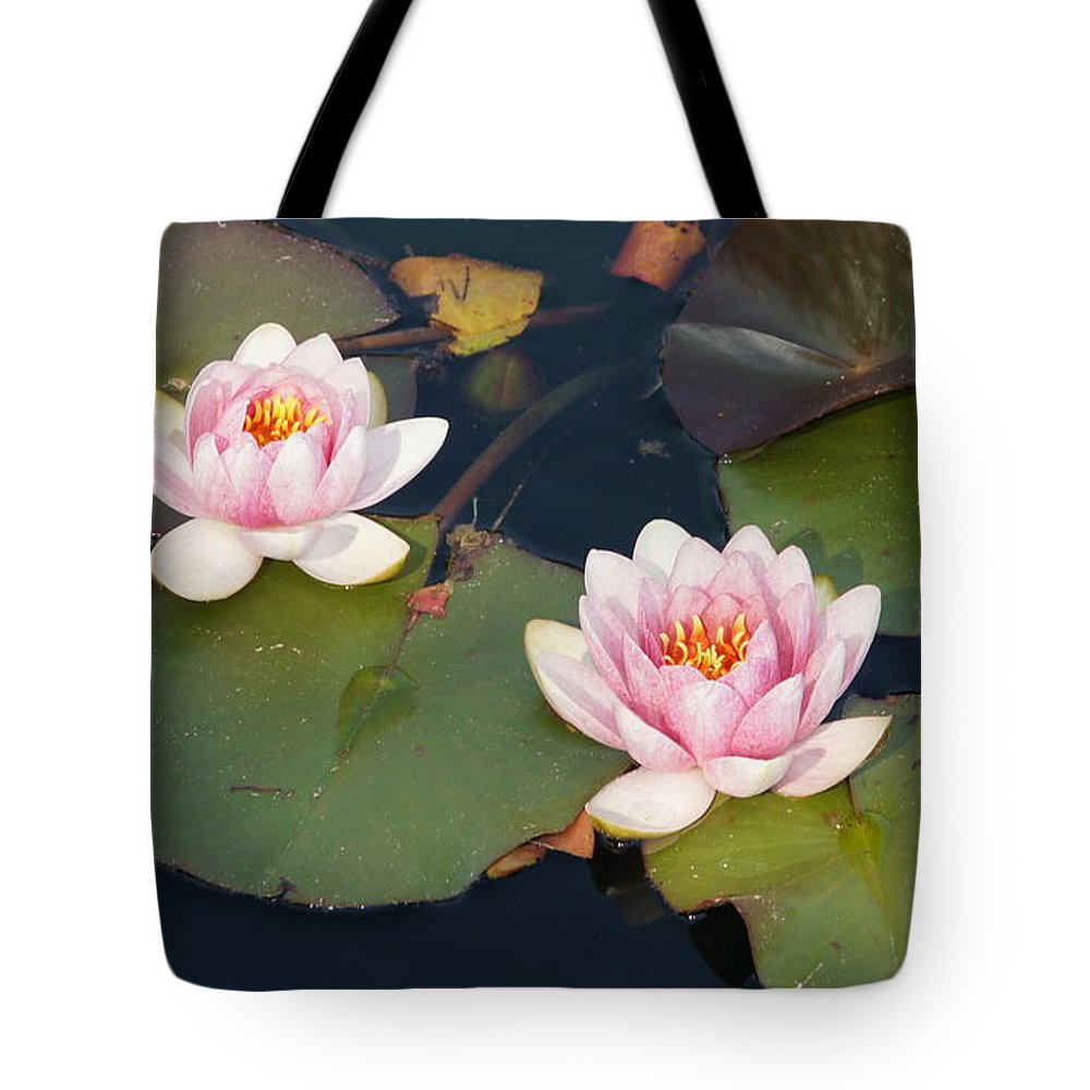 Water Lillies Tote Bag featuring the photograph Two Water Lillies by Megan Cohen